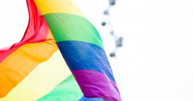 Dichiarazioni che escludono l'assunzione di omosessuali rientrano nelle condizioni di accesso all'occupazione e lavoro di cui all'art 3 direttiva 2000/78